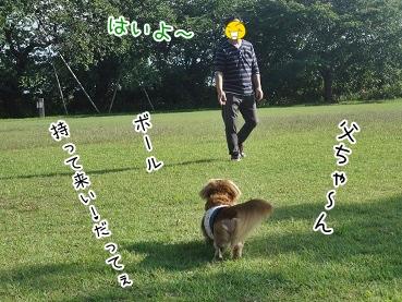 kinako3389.jpg