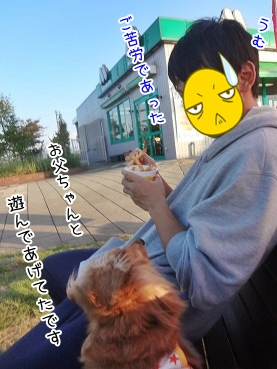 kinako3390.jpg