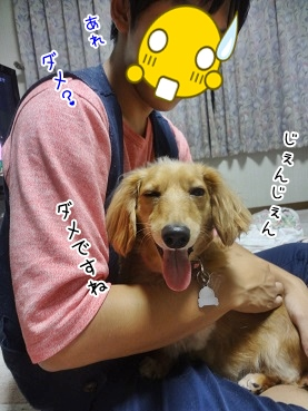 kinako3406.jpg