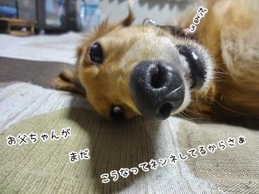 kinako3410.jpg