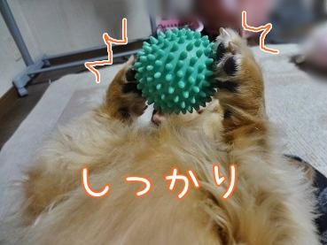 kinako3479.jpg