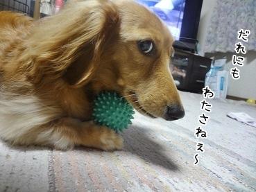 kinako3480.jpg