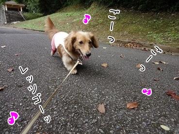 kinako3482.jpg