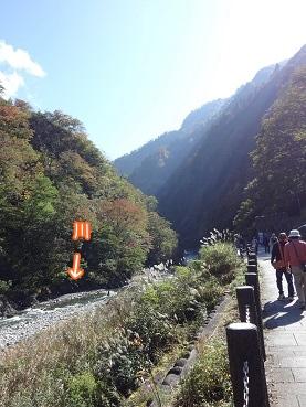 kinako3501.jpg