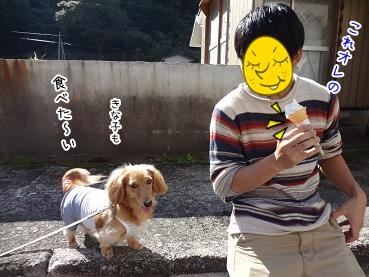 kinako3516.jpg