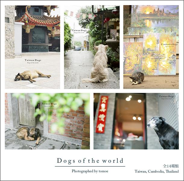 postcard_dogs.jpg