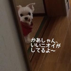 151009_7.jpg
