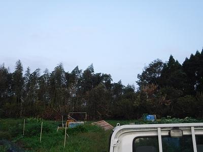 2015.9.26開墾地3
