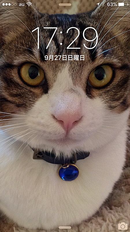 20150927172911.png