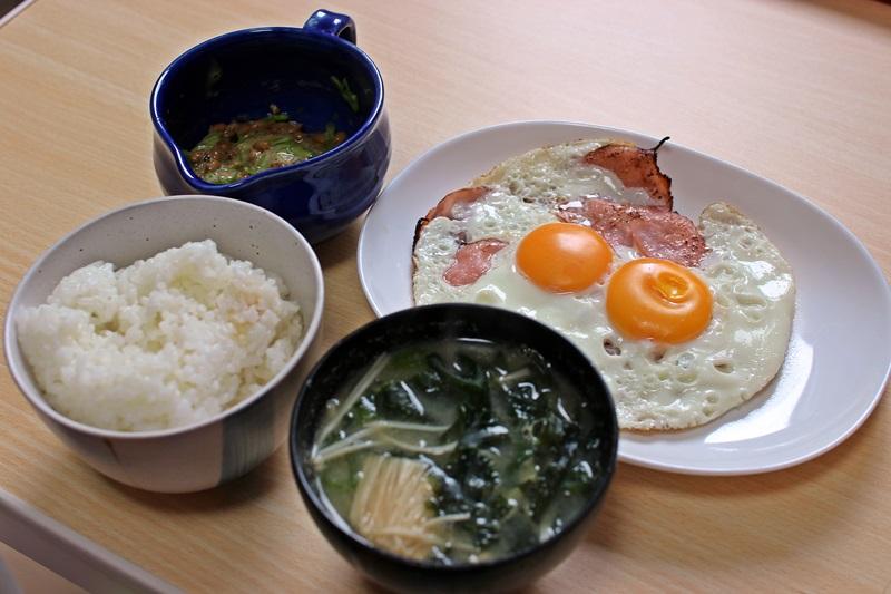nobunobu12300544.jpg