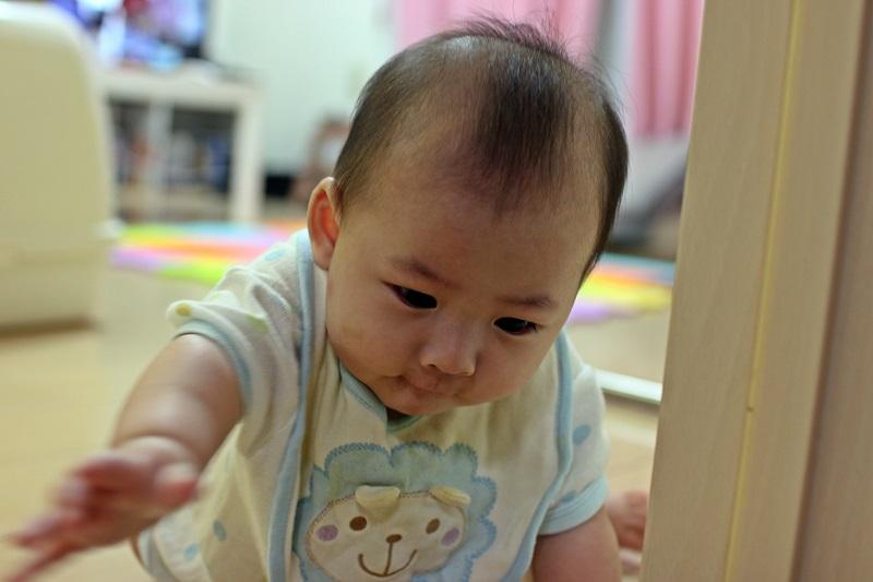nobunobu12300652.jpg