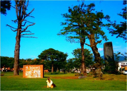 03 500 20150915 早朝の芝生公園 Erie