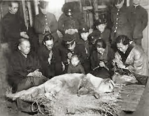 07 300 19350308 Hachi just after death