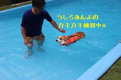 練習練習☆