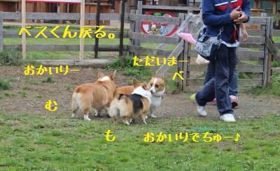 おかいり~☆