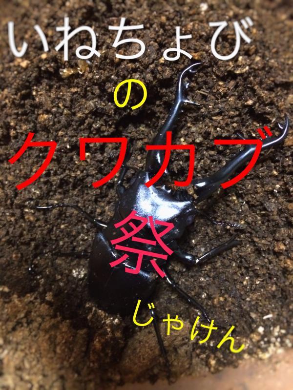 いねちょびさんプレ2015