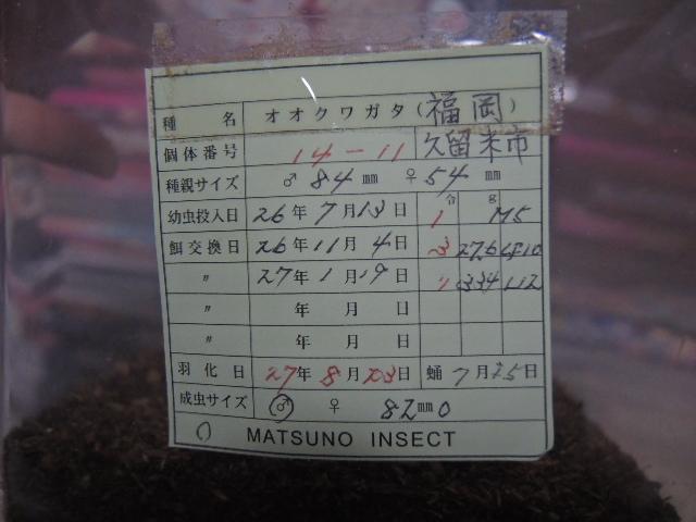 DSCN0795[1]