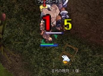 216renbakonawa2.jpg