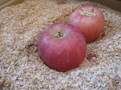 昔リンゴって木箱で送られて来て、米殻の中探して有ったら食ってたんだぜ。