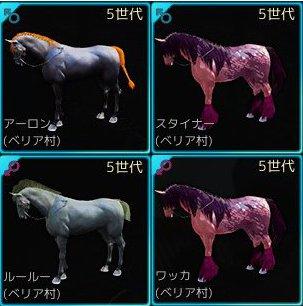 6世代挑戦馬