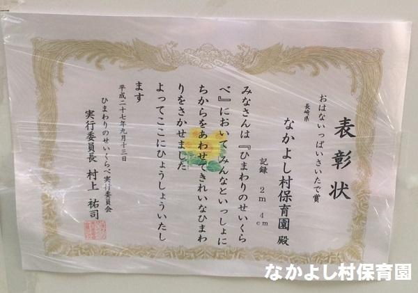 151007_ひまわり1