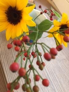 Blumenhi.jpg