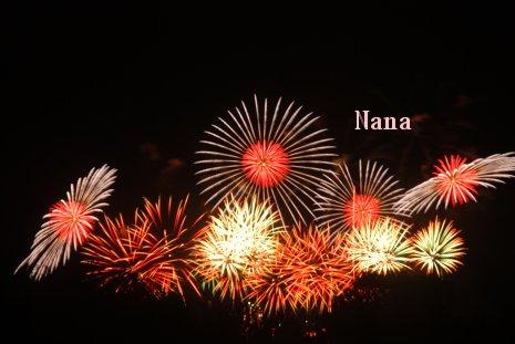 fireworks1-14.jpg