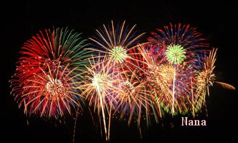 fireworks1-15.jpg