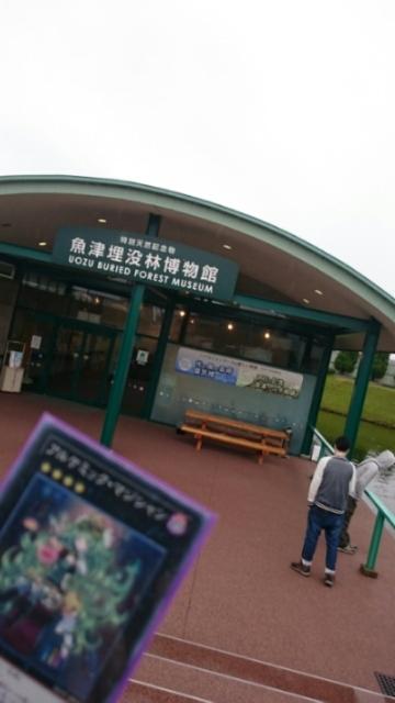 魚津埋没林博物館01