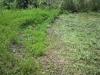 草刈り途中