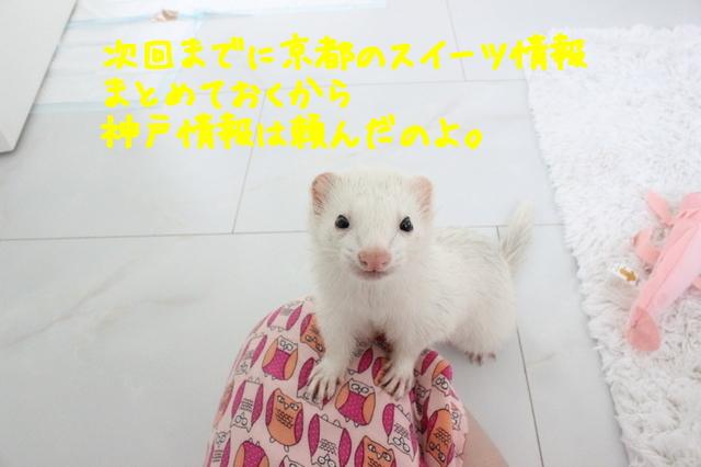 l2PY8bFwO65aiLG1442122318_1442122378.jpg