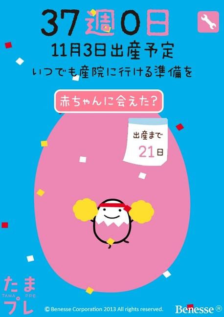 IMG_20151013_175708.jpg