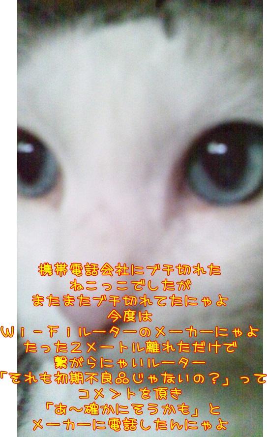DSC_0171 (4)