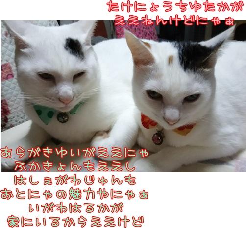 DSC_0002_20151013221829dd2.jpg