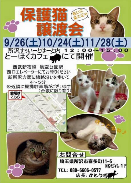 とーほくカフェ譲渡会9月~