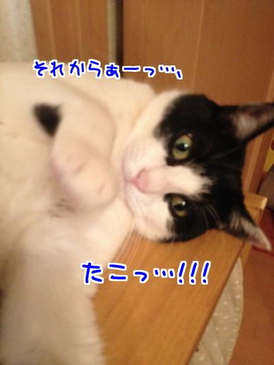 I_YY3a8uOwvwrBv1441454815_1441455021.jpg