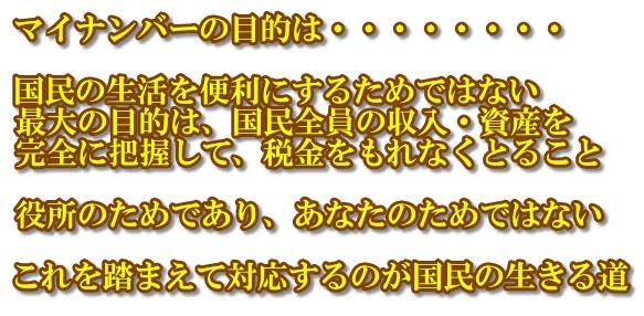 mynumberhakikensugiruzaru2015929 (3)
