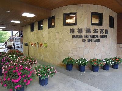 湿生花園(2)