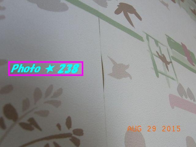 ヒビの入った壁紙①