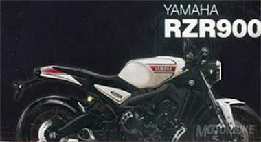 RZR900.jpg