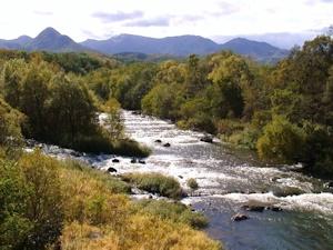 秋の豊平川
