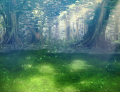 002-Forest.png