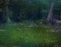 003-Deepforest.png