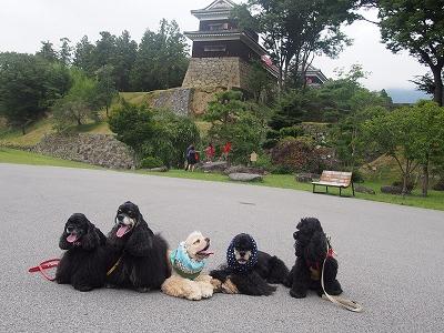 s-上田城址公園