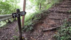 ヤビツ峠に向かう山道