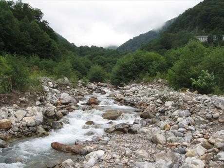 150823-075015-籠川上流_R