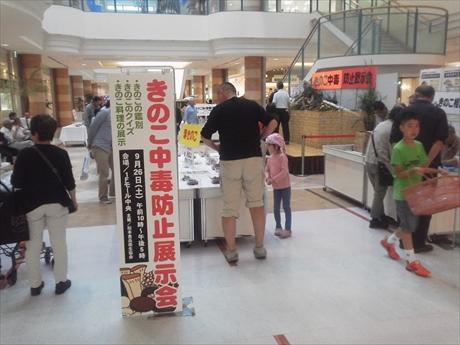 150926-164700-キノコ展_R