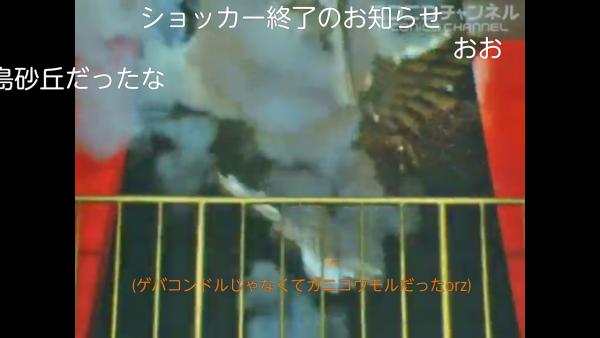 Screenshot_2015-09-13-15-11-26.png