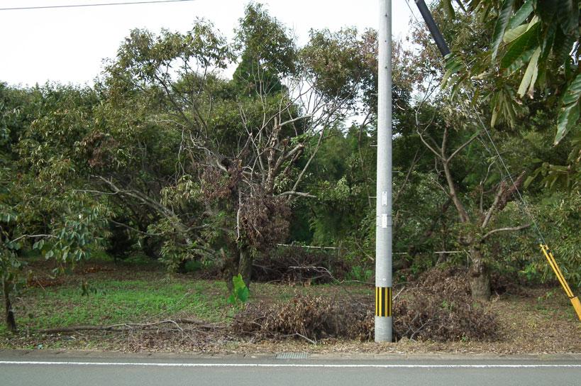 2015向かい側畑被害_2