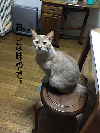 20150322_142321804_iOS.jpg